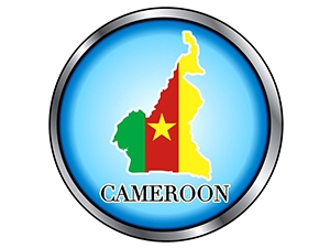 Pulling the plug on the Internet was a blow for Cameroon's 'Silicon Mountain'.